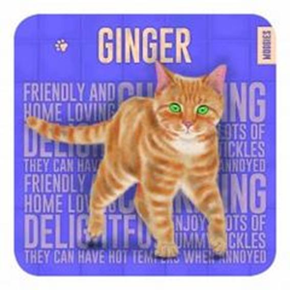 Ginger Coaster