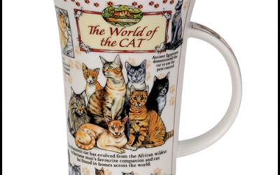 Dunoon The World of the Cat